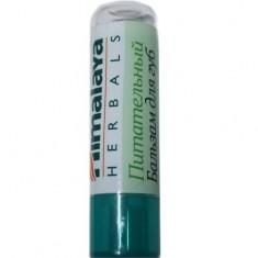 Питательный бальзам для губ HIMALAYA HERBALS
