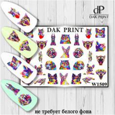Dak Print, Слайдер-дизайн №1509